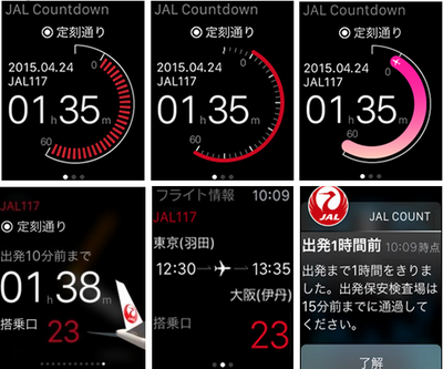 Japan Airlines Apple Watch